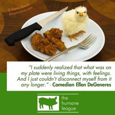 """""""I suddenly realised that what was on my plate were living things, with feelings and i just couldn't disconnect myself from it any longer"""" - Ellen DeGeneres"""