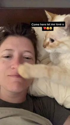 Funny Cute Cats, Cute Funny Animals, Cute Dogs, Cute Little Kittens, Cute Little Animals, Cute Animal Videos, Cute Creatures, Baby Cats, Animal Memes