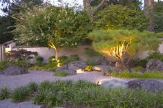 For our backyard remodel - Japanese landscape design