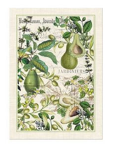 KITCHEN Towel ~ AVOCADO ~ Michel Design Works (NEW)   #MICHELDESIGNWORKS
