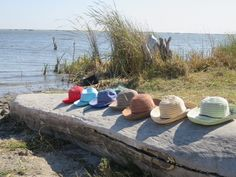 Our hats have travelled far already, all lined up on Lake Liambezi in Namibia.