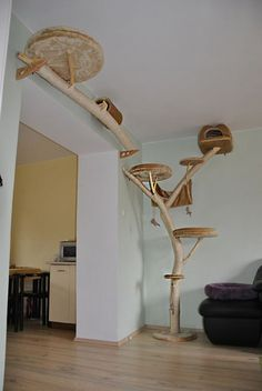 Cats Toys Ideas - krabadl a maacie stromy, maka, maiky, fotogalria maacie stromy - Ideal toys for small cats Cool Cat Trees, Diy Cat Tree, Cool Cats, Home Design Diy, 3d Design, Cat Towers, Ideal Toys, Cat Playground, Cat Room