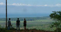 View to the Portasol Valley! / info@portasol.cr