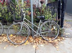 Bicycle long forgotten by someone outside the pot shop