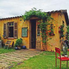 Meninices da Vida: De malas prontas: Floricultura Winge / Café & Prosa