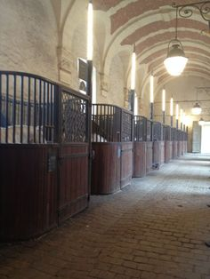 Academie des arts équestres, Versailles