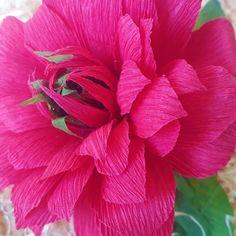 Flora Nordica (@_flora__nordica_) • Фотографије и видео записи на услузи Instagram Flora, Dahlia, Rose, Plants, Handmade, Beautiful, Instagram, Pink, Hand Made