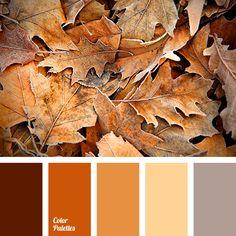 Coloration Palette brown, chocolate colour, colours of a Fall Color Schemes, Fall Color Palette, Colour Pallette, Pantone, Orange Color Palettes, Design Seeds, Chocolate Color, Color Balance, Color Theory
