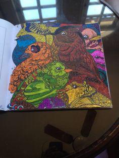 Livro de Colorir: Natureza e Paisagens #coloringbook #livrodecolorir