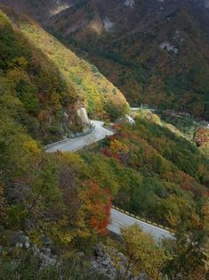 #Misiryeong Yetgil (Old Road) travels 11 kilometers along the ridge of the Misiryeong Ridge in Gangwon Provice, Korea. It offers plenty of things to do, from camping, biking and hiking, to local art, cultural and historic sites. | 미시령 옛길