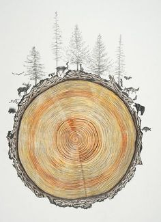 Family Tree, 2014, graphite and colored pencil on paper by Rebecca Clark: