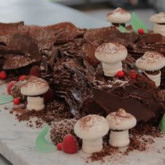 Try this Chestnut and Chocolate Yule Log recipe by Chef Sian. This recipe is from the show The Great Australian Bake Off.