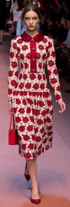 Dolce & Gabbana Fall RTW 2015