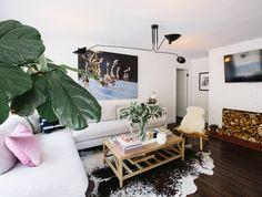 Fiddle Leaf in living room.
