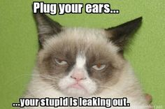 Plug your ears...your stupid is leaking out.