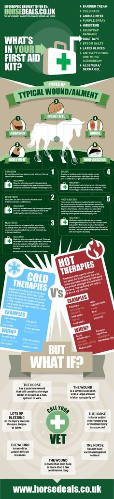 First aid infographic for common ailments and wounds. http://www.horsedeals.co.uk