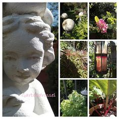 Kreatives aus dem Drosselgarten: Garten Impressionen