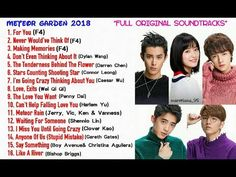 10 Meteor Garden Ost And Songs Ideas Meteor Garden Songs Meteor
