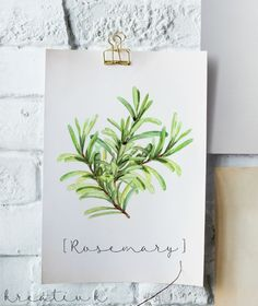 Herbs are not only great in a garden, but printed and hung up on a wall so cute too! Download this free rosemary printable for you own personal use and decorate your walls! Valentine's Day Printables, Printable Cards, Printable Wall Art, Herbs Illustration, Herb Labels, Kitchen Wall Art, Kitchen Prints, Free Prints, Print Pictures