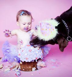Cake Smash Photography Melbourne, 1st Birthday Cake SmashEnhance Photography Studios Cake Smash Photography, Birthday Cake, Pets, Birthday Cakes, Cake Birthday, Birthday Sheet Cakes