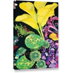 ArtWall Allan Friedlander Yellow Cala Gallery-wrapped Canvas, Size: 16 x 24, Green