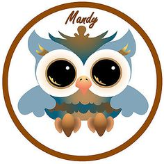 Cool owl - #funny / joke personalised - car tax disc #holder *any name* - #reusab,  View more on the LINK: 	http://www.zeppy.io/product/gb/2/271331779308/