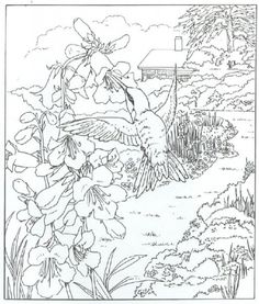 "Very Detailed Realistic Hummingbird Coloring Page For Adults free | Join my grown-up coloring fb group: ""I Like to Color! How 'Bout You?"" https://m.facebook.com/groups/1639475759652439/?ref=ts&fref=ts"