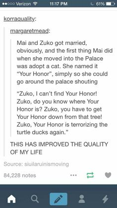 Your Honor the cat