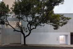 Image 1 of 15 from gallery of SIM + Simões de Assis Gallery / Arquea Arquitetos. Photograph by Leonardo Finotti Light Reflection, Exhibition Space, Entrance Doors, Cladding, White Walls, Ground Floor, Light Colors, Interior And Exterior, Architecture Design