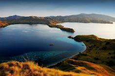 Komodo et ses animaux préhistoriques L'île de Komodo fait partie des petites îles de la Sonde d'une trentaine de kilomètres de long connue surtout pour ses varans, appelés dragons : le plus grand lézard du monde. Pulau Komodo accueille également un étrange lac intérieur.
