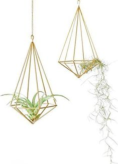 Mkono-Hanging-Air-Plant-Holder-Modern-Geometric-Planter-with-Chain-Tillandisia-Container-Himmeli-Wall-Decor-Gold-2-Packs
