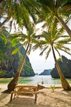 I dunno where this is at and I normally would not be attracted to palm trees and sand, but a nicy little cove in the shade of palm trees where I could canoe off shore would make my day.