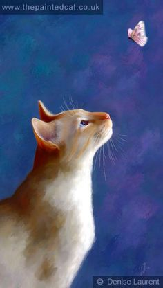 'Red And The Butterfly '- by Denise Laurent  The Painted Cat, Siamese Gallery.