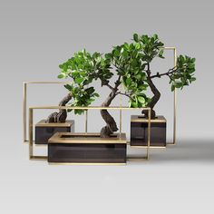 Condo Furniture, Patio Furniture Sets, House Plants Decor, Plant Decor, Ikebana, Cement Art, Zen Style, Chinese Furniture, Bonsai Art