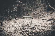 Silent in the #woods #nature  http://www.raggieleonora.com #FstopGear #EleonoraRaggiPhotography