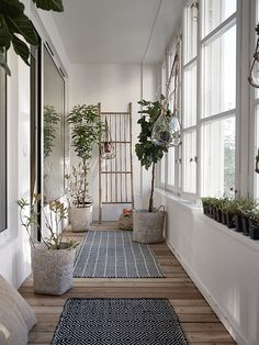 minimalist scandinave | (my) unfinished home Дорожки