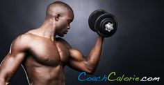Compound Exercises are the Best Way to Build Muscle
