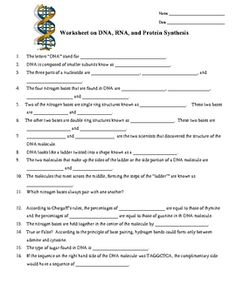 DNA, RNA, Protein Synthesis Worksheet / Study Guide | Dna, Student ...