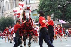 祭り kumamoto