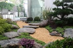 Vintage small japanese garden photos with natural stone decoration and small trees and any relaxing area