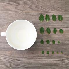 Hojitas de menta para una tisana.  #30daychallenge #day3 #tea #tealovers #teaculture #tea #teatime #instatea  tealife #ilovetea #teaaddict #tealover #tealovers #teagram #healthy #drink #hot #mug #teaoftheday #teacup #teastagram #teaholic
