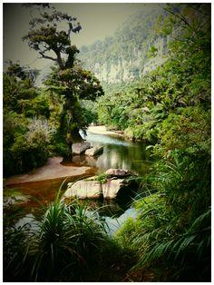 The Pororai River Punakaiki West Coast South Island NZ