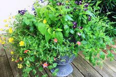 patio planter yellow and purple flowers