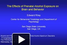 Edward Riley Center for Behavioral Teratology and Department of Psychology San Diego State University San Diego, CA Alcohol and Pregnancy: An Overview of Fetal ...