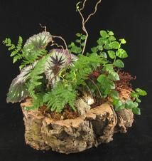 Cool Log Planter