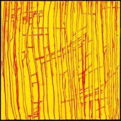 Karen Williams Abstract Painting on Canvas Yellow Artwork, International Artist, Affordable Art, Warehouse, Original Artwork, Contemporary Art, Abstract Art, Sculptures, Art Gallery