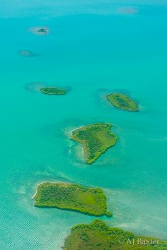 Image: Airplane view of Belizean Islands in the Caribbean Sea