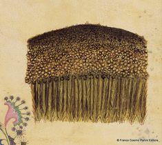 """CONSIGLI DAL MEDIOEVO: I SEMI DI LINO - """"Il seme di lino, con miele e pepe, stimola la pulsione venerea se preso in buona quantità. Il suo succo cura il dolore dell'intestino e lo spasmo dei luoghi segreti"""". Dal codice """"Historia Plantarum"""", fine XIV secolo."""