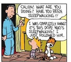 Calvin and Hobbes (DA) - I was completely awake! Best Cartoons Ever, Cool Cartoons, Hobbes And Bacon, Calvin And Hobbes Comics, Fun Comics, Life Comics, Wit And Wisdom, Comic Strips, The Funny