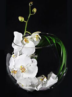 One perfect stem of white Phalaenopsis orchid curled in a large rose bowl with one feathery stem of Palm leaf...Perfect!